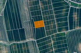 Prodej, orná půda, 5023 m2, Bzenec