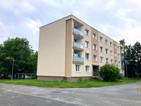 Prodej, byt 3+1, 68 m2, Horní Bříza, ul. Sídlištní