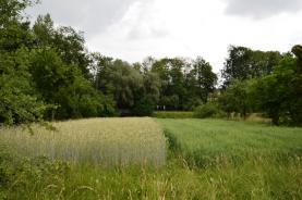 Prodej, pozemek, 2544 m2, Horní Tošanovice
