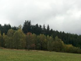 Prodej, les, 8689 m2, Hlinsko, Blatno u Hlinska
