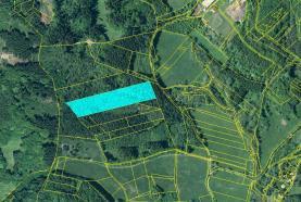 Prodej, les, 17851 m2, Třebušín