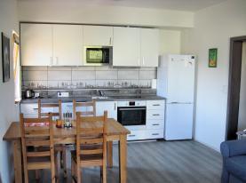 Prodej, byt 2+kk, 61 m2, Brno, ul. Pastviny