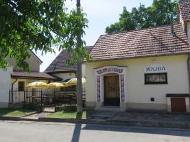 Prodej, vinný sklep s restaurací, Dolní Bojanovice