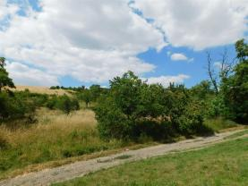 Prodej, ovocný sad, 12325 m2, Židlochovice