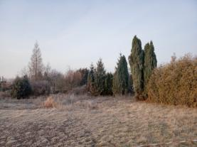 (Pronájem, zahrada, Čáslav), foto 3/8