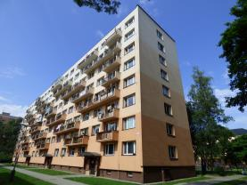 Prodej, byt 1+1, 40 m2, Frýdek - Místek