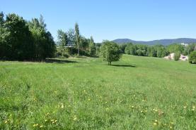 Prodej, pole, 38 534 m2, Liberec, Františkov u Liberce