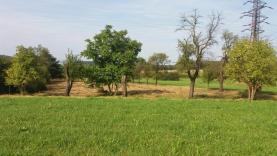 Prodej, pozemek, 5656 m2, Třemošnice