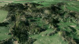 Prodej, les, 23488 m2, Starý Šachov