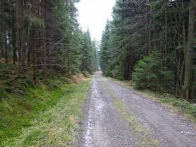 (Prodej, les, 48189 m2, Horní Bečva), foto 2/9