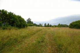 Prodej pozemku, 12000 m2, Mariánské Lázně