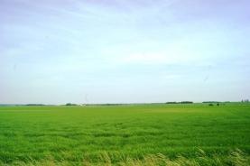 Prodej, orná půda, 20.484 m2, Hronětice