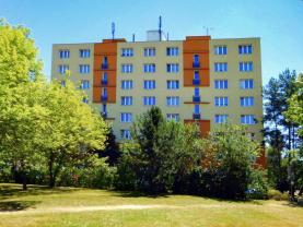 Prodej, byt 2+1, 61 m2, OV, Plzeň, ul. Skupova