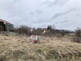 Prodej, stavební pozemek, 1006 m2, Nedabyle