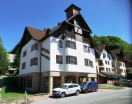 Prodej, byt 2+kk, 34 m2, Horní Rokytnice nad Jizerou