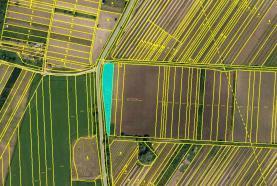Prodej, orná půda, 1804 m2, Valtice