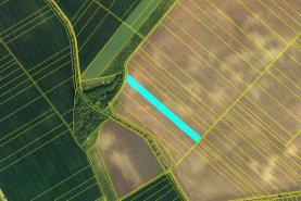 Prodej, orná půda, 1000 m2, Žatčany