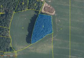 4542 m2 (Prodej, les, 24097 m2, Hradiště- Bezděkov), foto 3/13