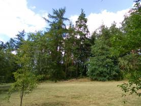 Prodej, les, 24097 m2, Hradiště- Bezděkov