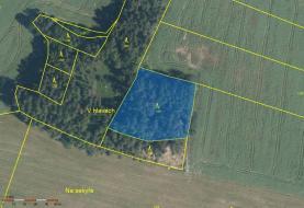 3718 m2 (Prodej, les, 24097 m2, Hradiště- Bezděkov), foto 4/13