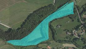 Prodej, lesní pozemky, 25338 m2, Libštát