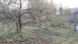 (Pronájem, zahrada, 600 m2, Praha 5 - Velká Chuchle), foto 2/5