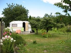 Prodej, zahrada, 522 m2, Hostašovice