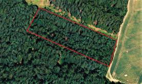 Prodej, les, 4904 m2, Hradešice - Černíč