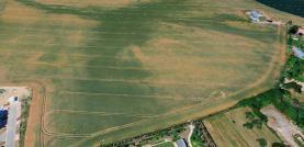Prodej, pole, 8845 m2, Pitkovice