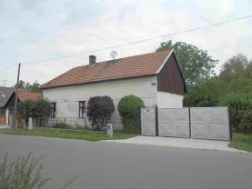 Prodej, rodinný dům 2+1, 1694 m2, Choťovice