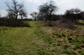 _DSC0215 (Prodej, pozemek, 914 m2, Šumperk, Horní Temenice), foto 4/11