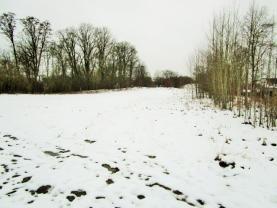 Prodej, pozemek, 12143 m2, Kaceřov, okr. Sokolov