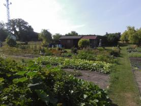 Prodej, zahrada, 585 m2, Sadská