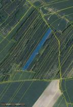 Prodej, les, 18.594 m2, Velký Borek