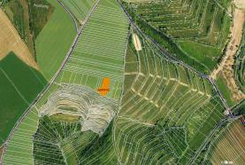 Prodej, orná půda, 599 m2, Hustopeče u Brna
