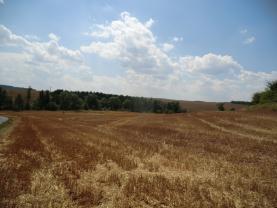 Pozemek (Prodej, pole, 36 237 m2, Vroutek), foto 3/7