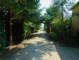 Prodej, zahrada, Chodouny
