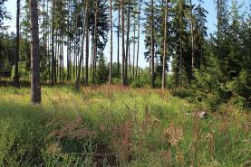Prodej, les, 55276 m2, Vlastec