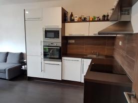 Pronájem, byt 2+kk, 41 m2, Ostrava, ul. Jantarová