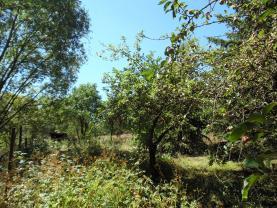 zahrada (Prodej, stavební pozemek, 2517 m2, Liteň), foto 4/28