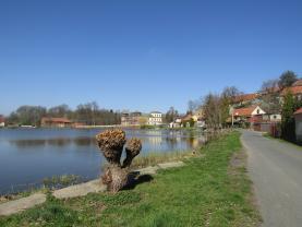 okolí (Prodej, rodinný dům, 590 m2, Svojšice), foto 3/29