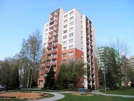 Prodej, byt 1+kk, 31 m2, Ostrava, ul. Petruškova