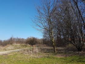 Prodej, stavební pozemek, 6263 m2, Ostrava, ul. Nad Kaplí