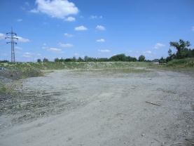 Prodej, komerční pozemek, 15700 m2, Staříč