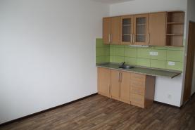 Pronájem, byt 1+kk, 20 m2, Sokolov, ul. Švabinského