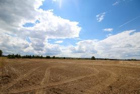 Prodej, pole, 20 762 m2, Herink