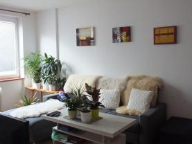 Pronájem, byt 2+1, 54 m2, Vrbno pod Pradědem