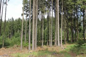 Prodej, les, 2303 m2, Ostrov nad Oslavou