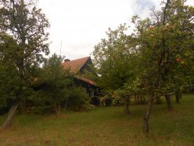 Prodej, pozemek, 123478 m2, Cotkytle - Janoušov