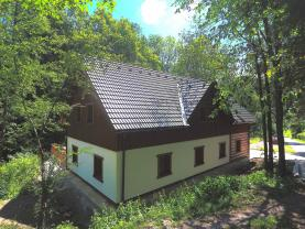 Prodej, penzion, 1092 m2, Rudník